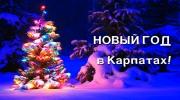 Закарпатье: Новогодний Автобусный тур из Одессы 5 дней/4 ночи от 2650 грн.