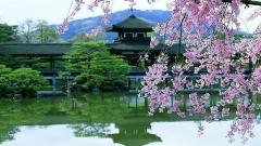 """Япония - Отдых на Майские Праздники """"Золотая Неделя в Японии"""""""